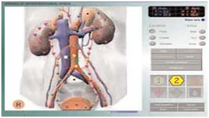 Bio-resonance Scan